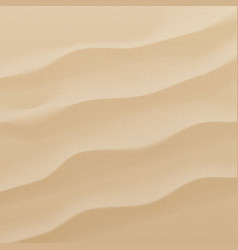 Sand background texture vector