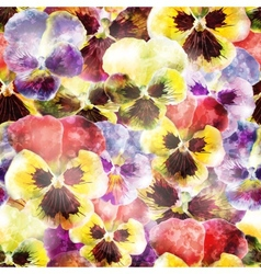 Seamless pattern pansy flowers  eps10 vector