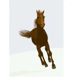 race horse vector image