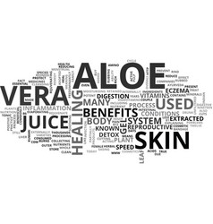 Aloe vera herbal text word cloud concept vector
