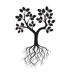 black tree and roots vector image vector image