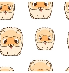 Seamless pattern with pomeranian puppies colorful vector