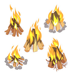 Campfire outdoor bonfire with burned logs cartoon vector