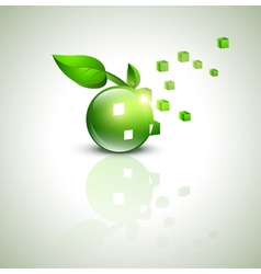 Eco green design vector