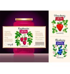 Berries Jam Label Collection vector image
