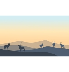 Landscape antelope silhouette in hills vector