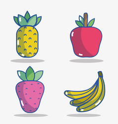 Set delicious and fresh fruit food vector