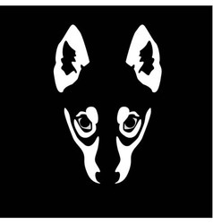 wolf face on black background vector image