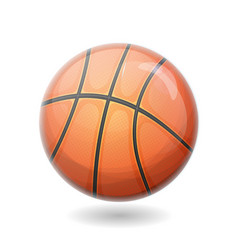 basketball ball isolated vector image
