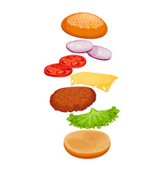 Burger with ingredients isolated on white crispy vector