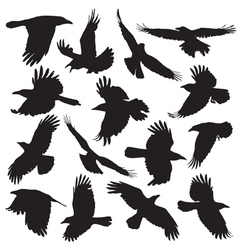 Crow silhouette set 01 vector