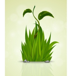 Green grass sprouting from the earth vector