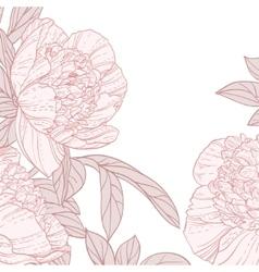Beautiful peonies line art background vector image vector image