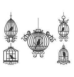 Birdcage with birds vector