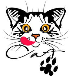 Cat portrait emblem vector image