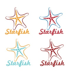 starfish design template vector image