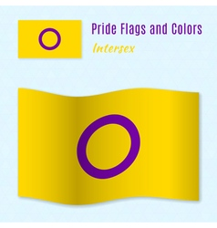 Intersex pride flag with correct color scheme vector