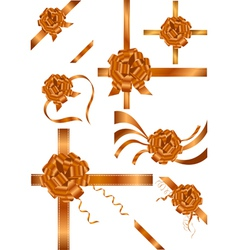brown ribbons vector image