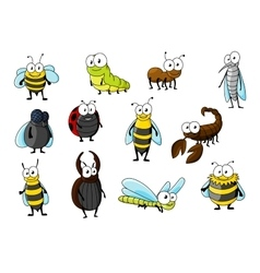 Cartoon funny insect animals characters vector image