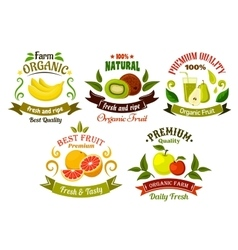 Organic fresh fruits emblems and symbols vector image vector image