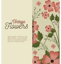Vintage flowers frame decoration vector