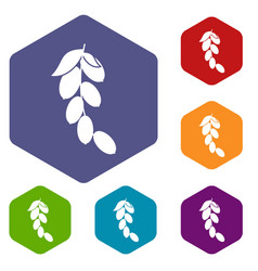 Branch of cornel or dogwood berries icons set vector