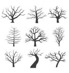 Dead tree silhouettes dying black scary trees vector