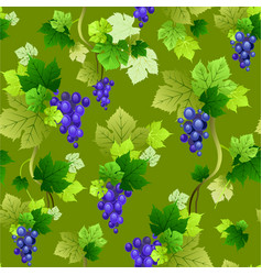 Grapes pattern on green background vector