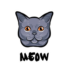 cute cat head pop art isolated on white vector image