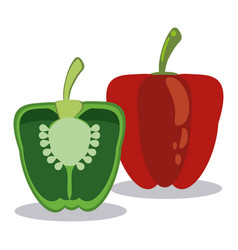 Red and green pepper ingredients vector