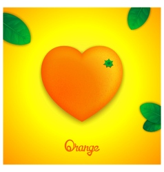 Sweet orange vector