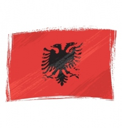 grunge Albania flag vector image vector image