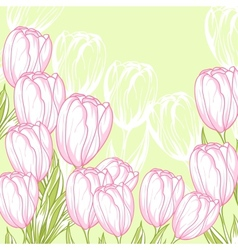 pink tulips card vector image vector image