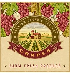 Vintage colorful grapes harvest label vector image