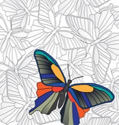 Banner butterflies vector