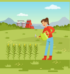 farmer woman watering corn plants with watering vector image