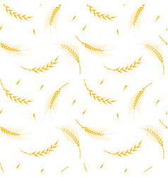 Wheat pattern on a white background vector