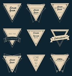 Triangle vintage label set vector image vector image