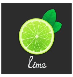 Just of lime vector