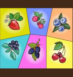 Berries set pop art comic vector