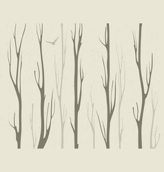 dry branches of bamboo trees vector image vector image