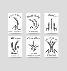 Grain products cards design vector