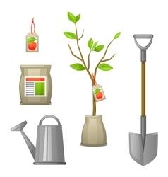Set of seedling fruit treeshovel fertilizers and vector