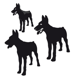 Silhouette of a dog vector