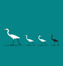 walking bird on blue background difference vector image vector image