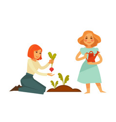 Young cartoon girls plant sweet beet isolated vector