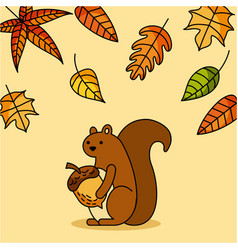 Autumn squirrel acorn animal season vector