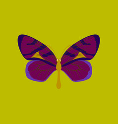 Colorful icon of butterfly isolated on green vector