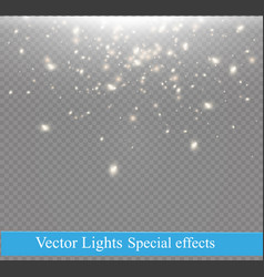 dust on a transparent backgroundbright starsthe vector image vector image