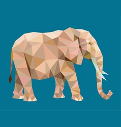 Elephant low polygon vector